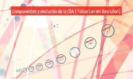 Componentes y evolución de la CBA ( Felipe Larraín Bascuñan)