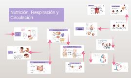 Nutrición, Respiración y Circulación