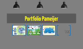 Portfolio Pameijer