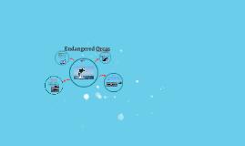 Endanger orcas
