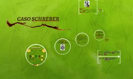 Copy of Copy of CASO SCHREBER