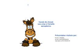 Copy of Viande de Cheval: la crise à l'échelle européenne