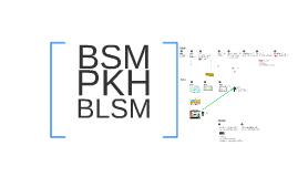 Copy of BSM