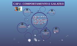 CAP. 4 COMPORTAMENTO E GALATEO
