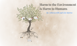 Harm to the Enviroment is Harm to Humans