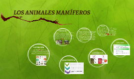 Copy of ANIMALES MAMIFEROS
