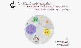 En titt på lärandet i Engelska: