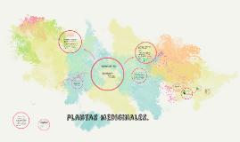 Plantas medicinales.