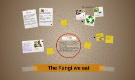 Copy of The Fungi We Eat