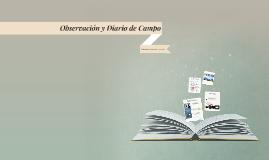 Observación y Diario de Campo