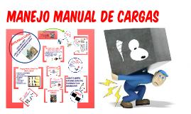 Copy of Copy of CAPACITACION MANEJO DE CARGAS