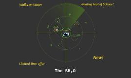 The SH(2)0