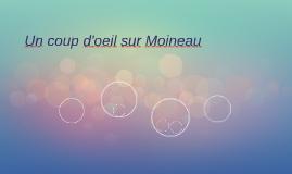 Un coup d'oeil sur Moineau