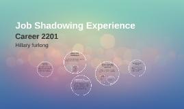 Job Shadowing Experience