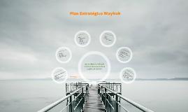 Plan Estratégico Waykuk
