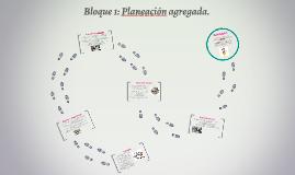 Bloque 1: Planeación agregada.