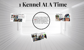 Copy of 1 Kennel At A Time