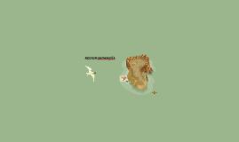REGION ORINOQUÌA