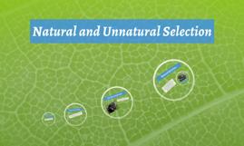 Natual and Unnatural Selection