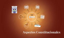 Aspectos Constitucionales Policía Nacional