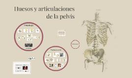 Huesos y articulaciones de la pelvis