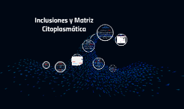 Inclusiones y Matriz Citoplasmática