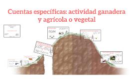 Copy of Cuentas específicas: actividad ganadera y agrícola o vegetal