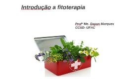 Plantas Medicinais e suas aplicações no SUS