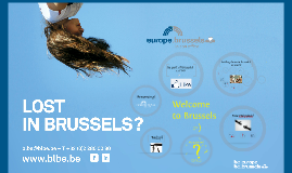 Expats - Welcome to Brussels!