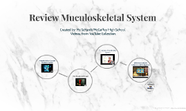Review Muculoskeletal System