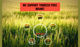 We support Tobacco Free Brunei