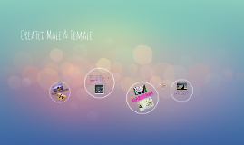 Created Male & Female