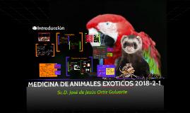 Intro Exoticos 2018-2-1