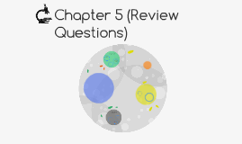 Chapter 5 (Review Questions)