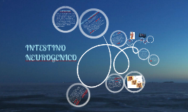 Copy of INTESTINO NEUROGENICO