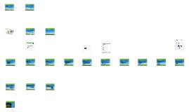 Copy of VCA