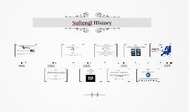 Softengi History