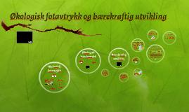 Bærekraftig utvikling og økologisk fotavtrykk