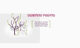Copy of DOMINIO PROPIO