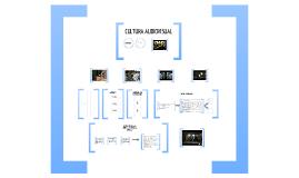 Presentació Curriculum Cultura Audiovisual - Silvia Pons Fernández