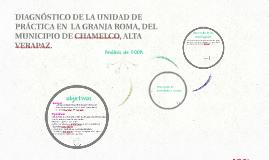Copia de DIAGNÓSTICO DE LA UNIDAD DE PRÁCTICA EN  LA GRANJA ROMA, DEL