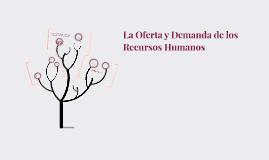 Oferta y demanda de los Recursos Humanos