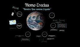 Copy of Homo Erectus