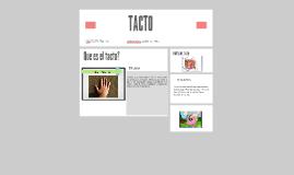 Copy of TACTO