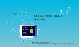 EPHX1 генінің ӨСОА әсер етуі