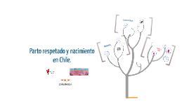 Clase Inaugural Obstetricia II, marzo 2014.