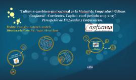Copy of Cultura y cambio organizacional en la Mutual de Empelados Pú