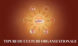 TIPURI DE CULTURI ORGANIZATIONALE