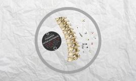 Foramen Intervertebral