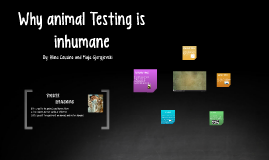 Why animal Testing is inhumane